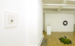 When The Quarry Calls (Installation View)